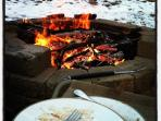 Early Spring Dinner by the Firepit