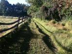 Walk the Farm's carriage trails