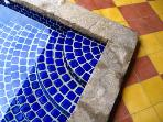 Beautifully tiled pool