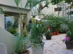 Garden area accessing the apartment