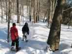 raquette /snowshoes - 2 km from house
