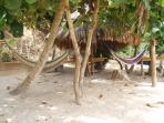 Hammocks on the Beach next to the Bar