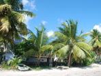 Mango Splash apartment is on the ground floor of the house on the beach