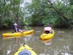 Kayak through the local mangroves in Damas. Just minutes away