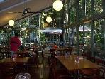 Rainforest Cafe across the road - great coffee!!