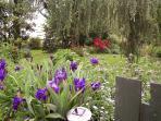 Garden area behind Gite