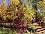 Fall Colors at the Log Cabin