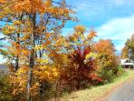Fall Foilage at Hawks View House. Driveway approach to house