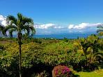 Maui Ocean Palms-Luxury  Wailea  Home wPool, Views