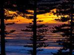 Manly Beach at dawn