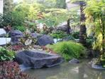 Tropical Foliage and Water Features Throughout Complex