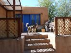 Back Porch with former dog - there is a Austrailan shepherd and a heeler there now
