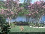 Rear Garden Facing Flamingo Lake