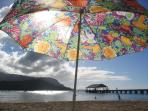 Historic Hanalei Pier from South Pacific Movie seen from Beautiful Hanalei Beach 1 minute walk away