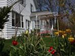 East pergola in spring