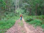 Bush walks, bird sounds & a beautiful place to breathe!
