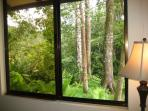 View from Dining Room into Canopy