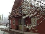 Quincho cabaña facade in winter