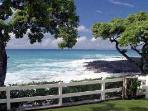 Best Natural Shore-Line in Kona