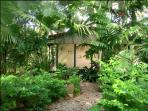 Private pathways to Casa Selva