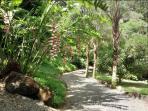 Private driveway to Casa Selva