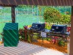 Gas Grills - 4 in total