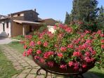 Al Gelso Bianco- farm Holiday Resort