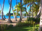 Playa Bonita Cove
