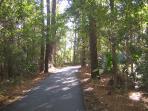 Bike/Hiking Trails