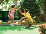 Mini Golf For Kids and Adults