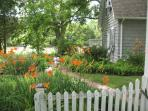 Bay Cottage Farm's culinary garden