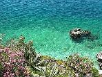 Our blue flagged sea