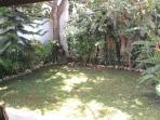 garden back side