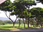 Wailea Golf Course Fronting the Grand Champions