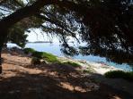 beach surroundings