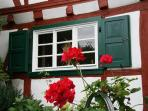Red,white and green - the colours of Eco-house Lütz (Moselle valley)