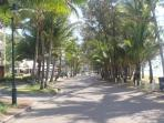 Main Street in Palm Cove