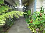 Kailua Guesthouse is quiet, peaceful and serene.