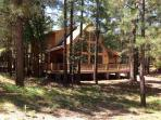 Front of cabin in the tall pines