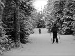 Lapland Lake Nordic Center 15 minute drive
