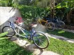 your free bikes