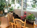 Dining Room with our kitty