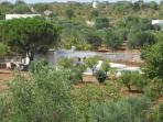 Peaceful setting above the olive groves