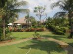 Beautiful tropical garden