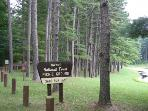 Entrance to Sandy Run Lake Picnic Area