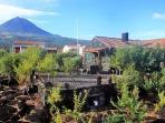 Holiday house with beautiful sea views,    on Pico Island, stunning landscape  - PT-1077214-Santa Luzia / Pico / Azoren