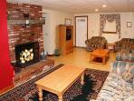 Lower Level has sitting room with log fireplace great for the Kids!