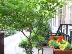 Small terrasse view on courtyard