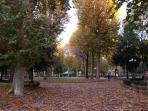 piazza d'azeglio in autumn