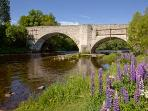 Old Spey Bridge, Grantown on Spey (4 miles)